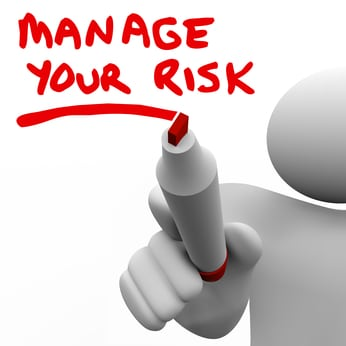 manage your business risk